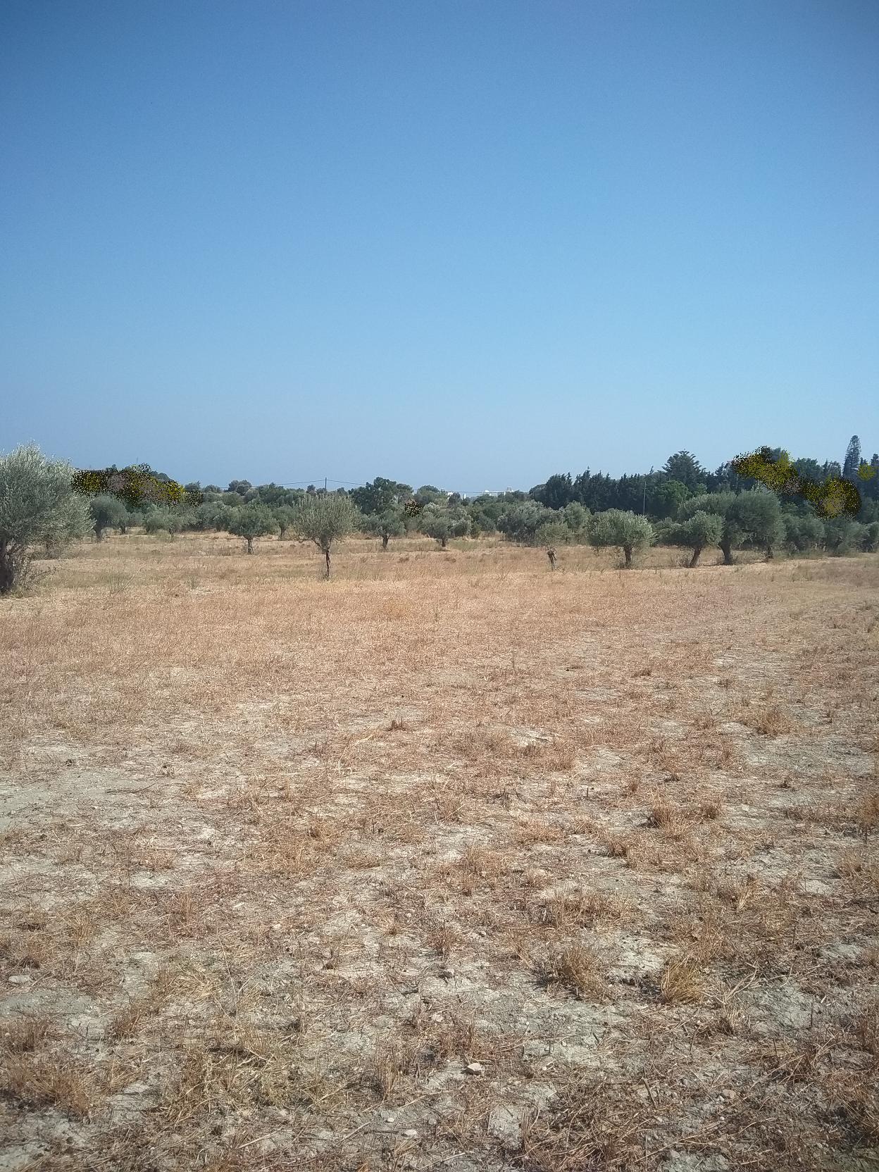 Προνομιούχο οικόπεδο στους πρόποδες της Φιλερήμου,Ρόδος, OIK-847483