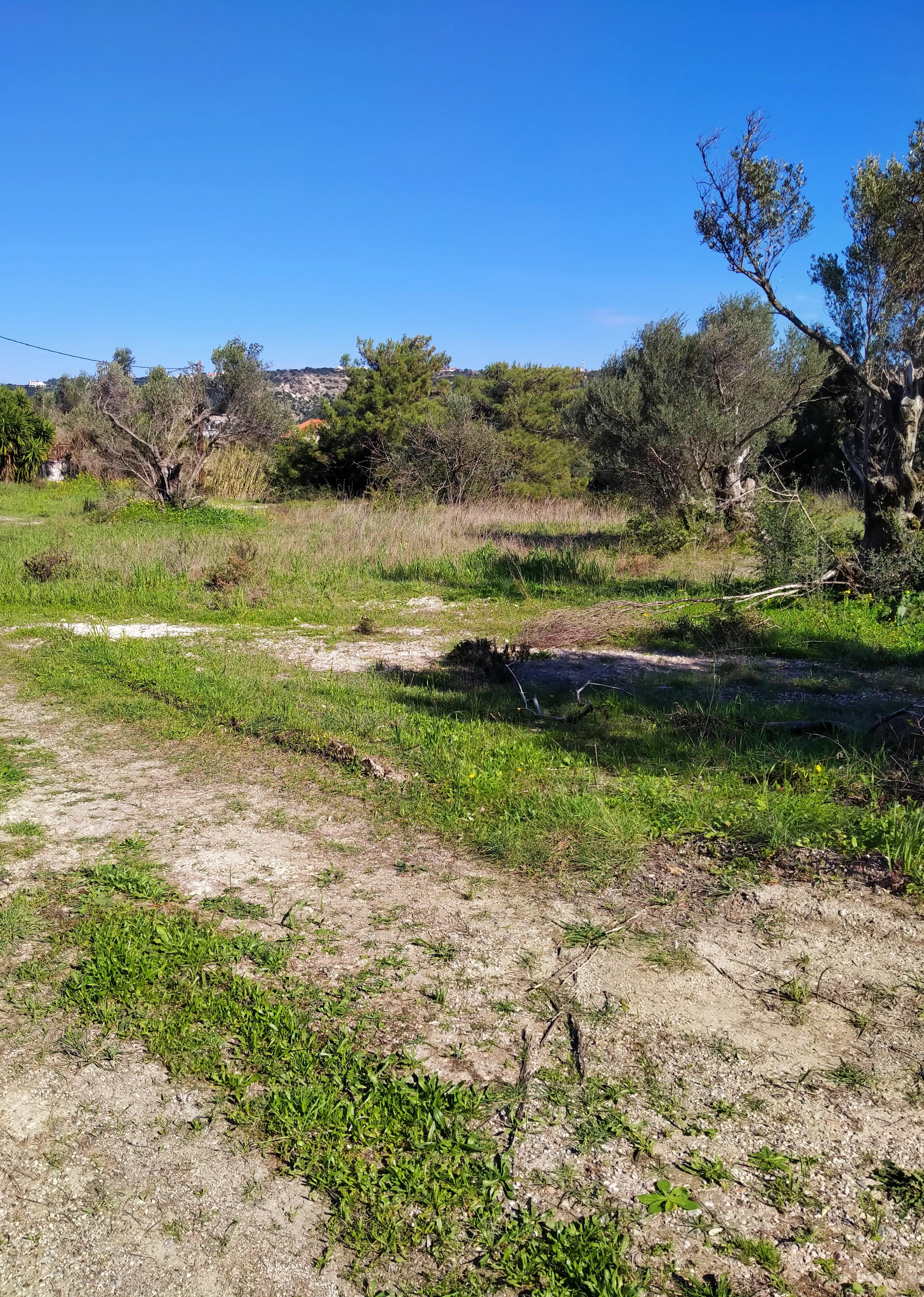 Αγροτεμάχιο κοντά  στη Ρόδου – Λίνδου και στο Κολέγιο Ρόδου, OIK-3765987